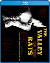 Blu-Ray_Valley